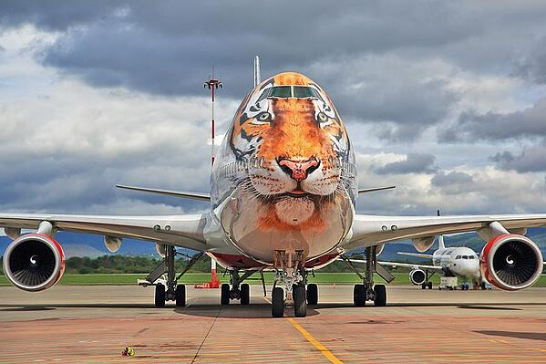 Rossiya-Airlines_Caring_for_Tigers_together_livery_Boeing_747-446